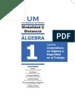 Manual de Algebra
