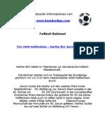 TSG 1899 Hoffenheim - Hertha BSC Berlin (0-1)