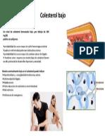 Colesterol Bajo