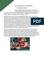 Historia de La Pituka
