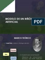 MODELO RIÑÓN ARTIFICIAL