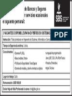 Expertos Sistemas (Ocasionales) Junio 2013