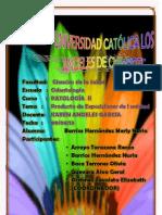 Producto i Unidad Pulpitis-Alveolitis-celulitis