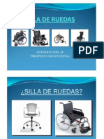 17 Silla de Ruedas
