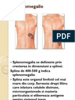 126_Splenomegalie[1].pdf