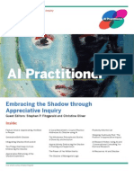 Appreciative Reframing of Shadow Experience AI Practitioner 2010