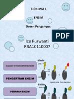 pp Enzim