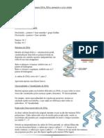 DNA, RNA, ciclo celular e mutações
