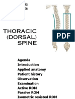 Thoracic (Dorsal) Spine