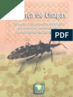 Doencas de Chagas