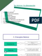 Diapositivas 3