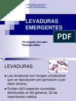 levaduras-emergentes-1194273925264947-4