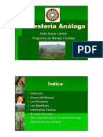 ForesteriaAnaloga_Ago2007