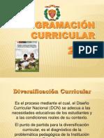 Programacion Curricular 2013