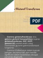 Trigger Praktikum Gamma GT 97-03