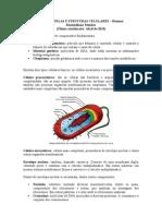 Bioogia CeluLar
