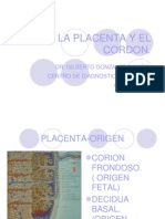 La Placenta y El Cordon