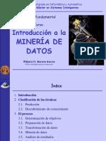 1 IntrodMineriaDatos_2007_