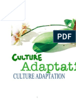 Culture Adaption