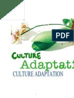 Culture Adaption