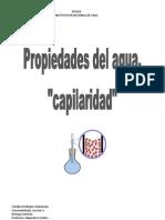 Biologia Informe Capilaridad Corregido.