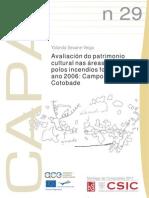 CAPA29.pdf