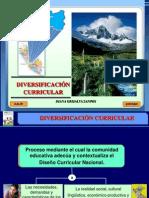 1. Diversisficación Curricular 2