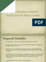 Sugestões para a Gestão Ambiental de Mato Grosso.pdf