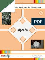 5 - PPE Algodon