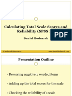 Calculating Total Scale Scores and Reliability SPSS - D.boduszek