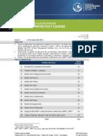 Gerencia Proyectos y Calidad Pucp Actualizado 02-05-2013