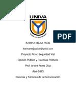 Proyecto Final Opinión Pública.pdf