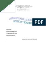 Informe Final de Desarrollo Endogeno