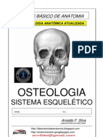 Anatomia Basica Estudos Dirigidos
