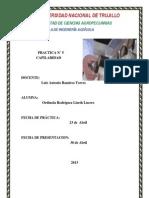 Capilaridad Info (1)
