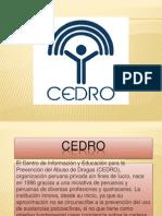 Presentacion Cedro