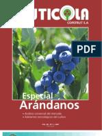 Especial-Arandanos.pdf