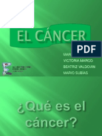 cancerbmodificada-090308092116-phpapp01