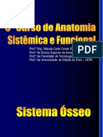 cursoanatomiaaula01sistemasseo-121119081221-phpapp01