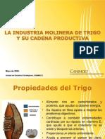 Presentacion Industria Molinera Concamin 140509