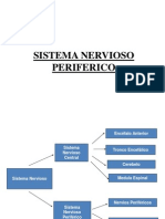 5-1 SISTEMA-NERVIOSO-PERIFERICO RESUMEN.ppt