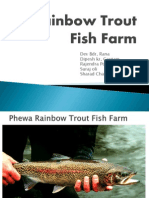 Rainbow Trout Fish Farm