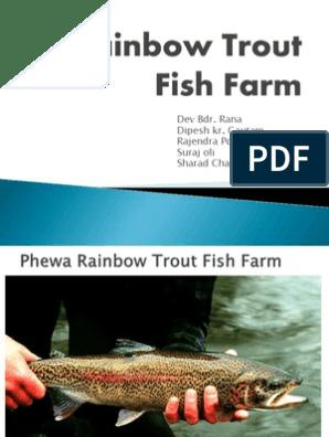 Rainbow Trout Fish Farm | Partnership | Sole Proprietorship