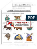 Carnivores Herbivores Omnivores