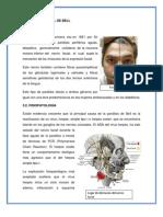 Anatomia Casos Clinicos