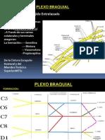 Plexobraquial2 111022124433 Phpapp02 Otro
