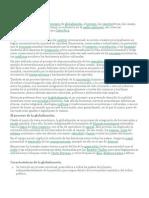 Globalizaci�n.docx