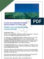 pchhina's summer project report Entrepreneurship