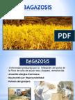 bagazosis-110502092122-phpapp02