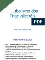 15 Metabolismo Dos Triacilglicerois